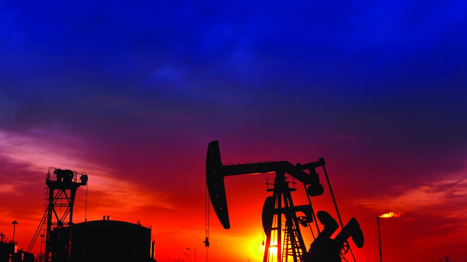 Fund manager raises fossil fuel divestment doubts