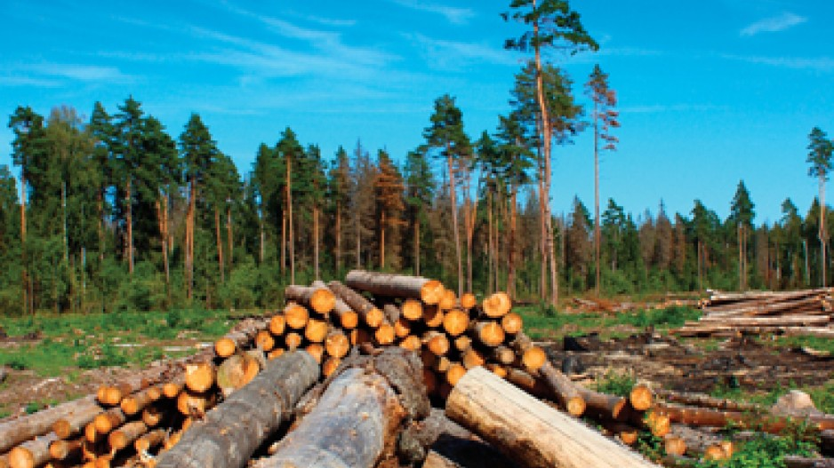 essays on forestry in canada Quebec, french québec, eastern province of canada constituting nearly one-sixth of canada's total land area, quebec is the largest of canada's 10 provinces in area and is second only to ontario in population.