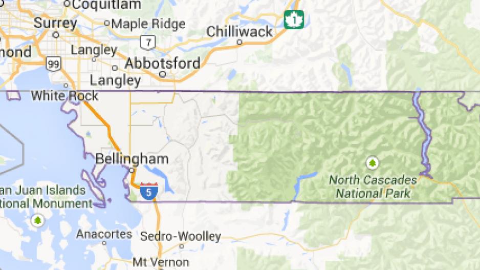 Avian flu found in wild birds in Washington state; not known if it ...