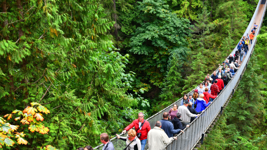 Tourist visits to bc remain strong in september hospitality the capilano suspension bridge is one of metro vancouvers top tourist attractions shutterstock publicscrutiny Image collections