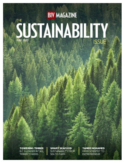 Sustainability 2020 Cover